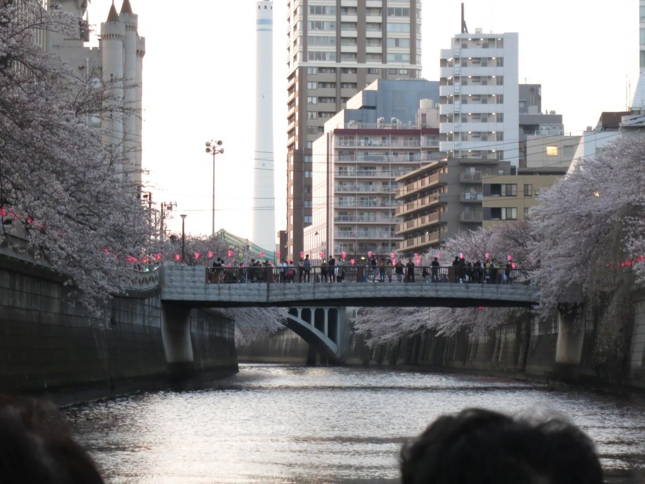 f:id:tokyocat:20150410121210j:image:w600