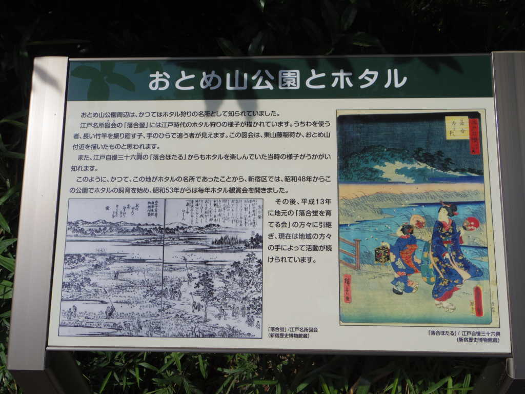 f:id:tokyoikimono:20170528175723j:plain