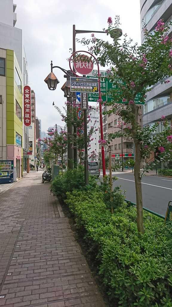 f:id:tokyoikimono:20170822200121j:plain