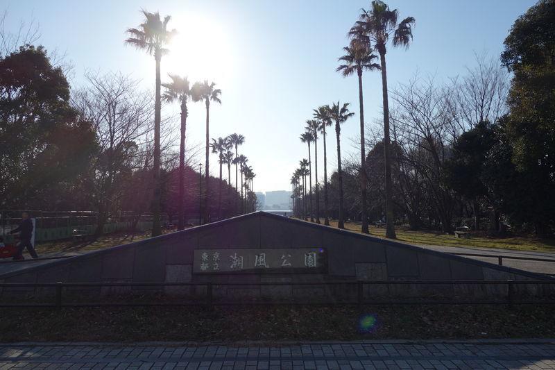 f:id:tokyojun:20190204125649j:plain