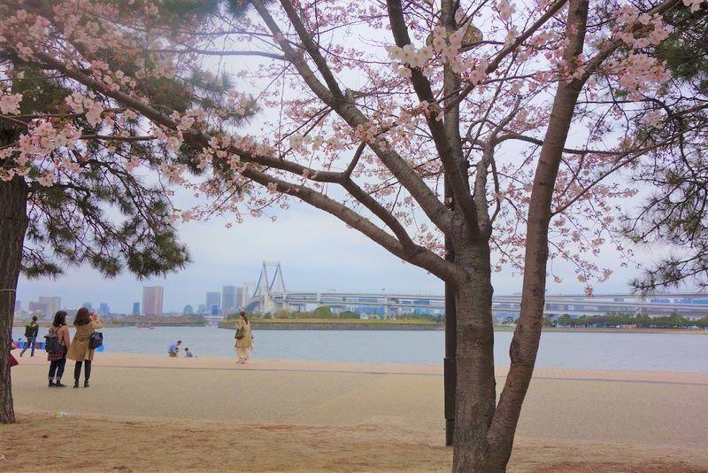 f:id:tokyojun:20190320100524j:plain