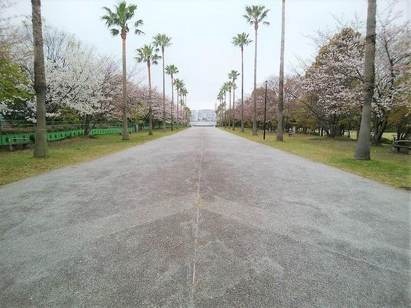 f:id:tokyojun:20190401162752j:plain
