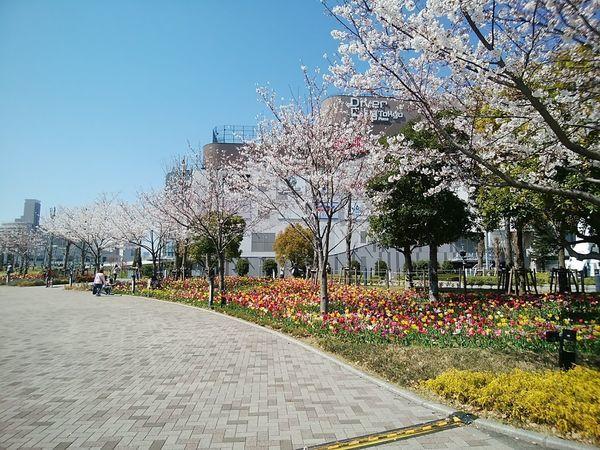 f:id:tokyojun:20190406133011j:plain