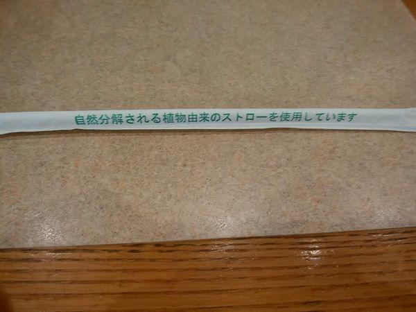 f:id:tokyojun:20190501143546j:plain