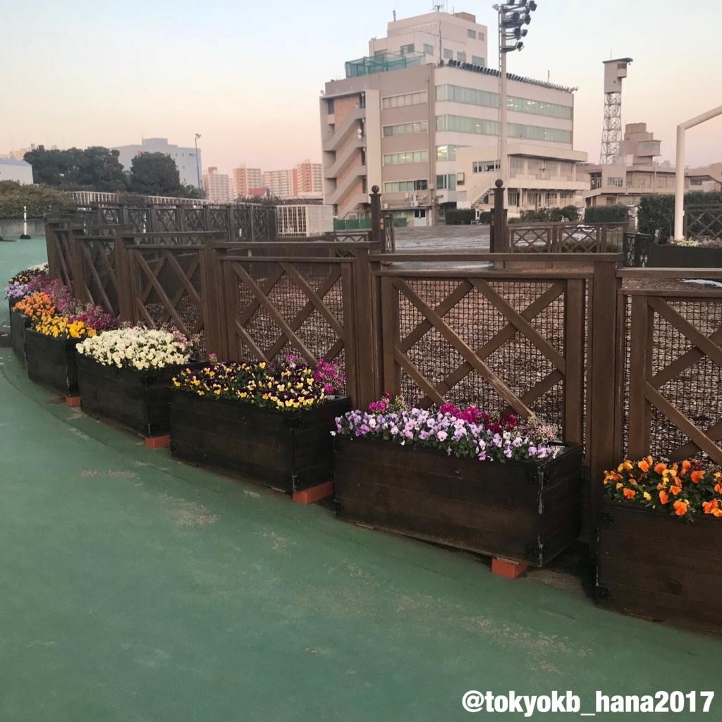 f:id:tokyokb_hana2017:20180123174131j:plain
