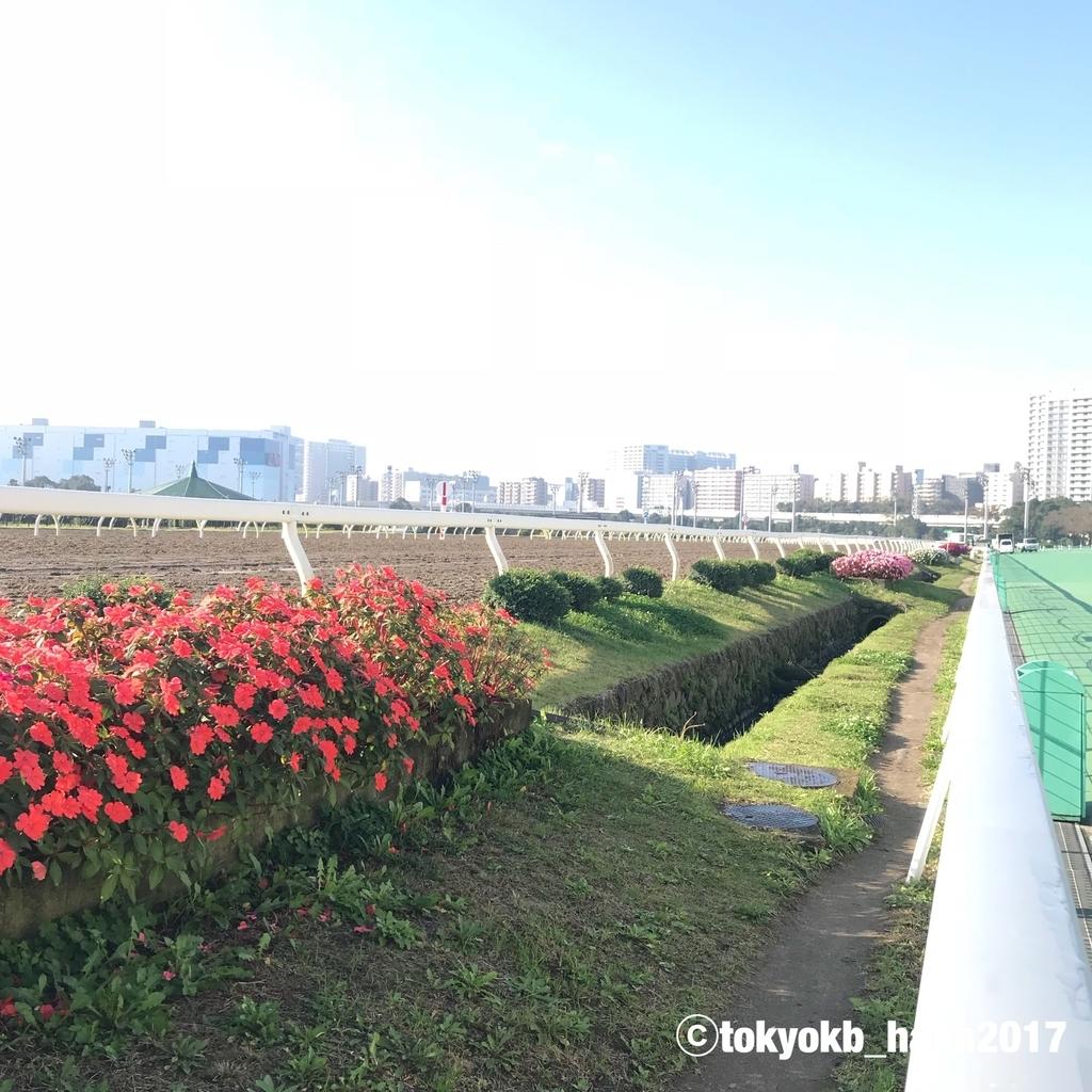 f:id:tokyokb_hana2017:20181110100014j:plain