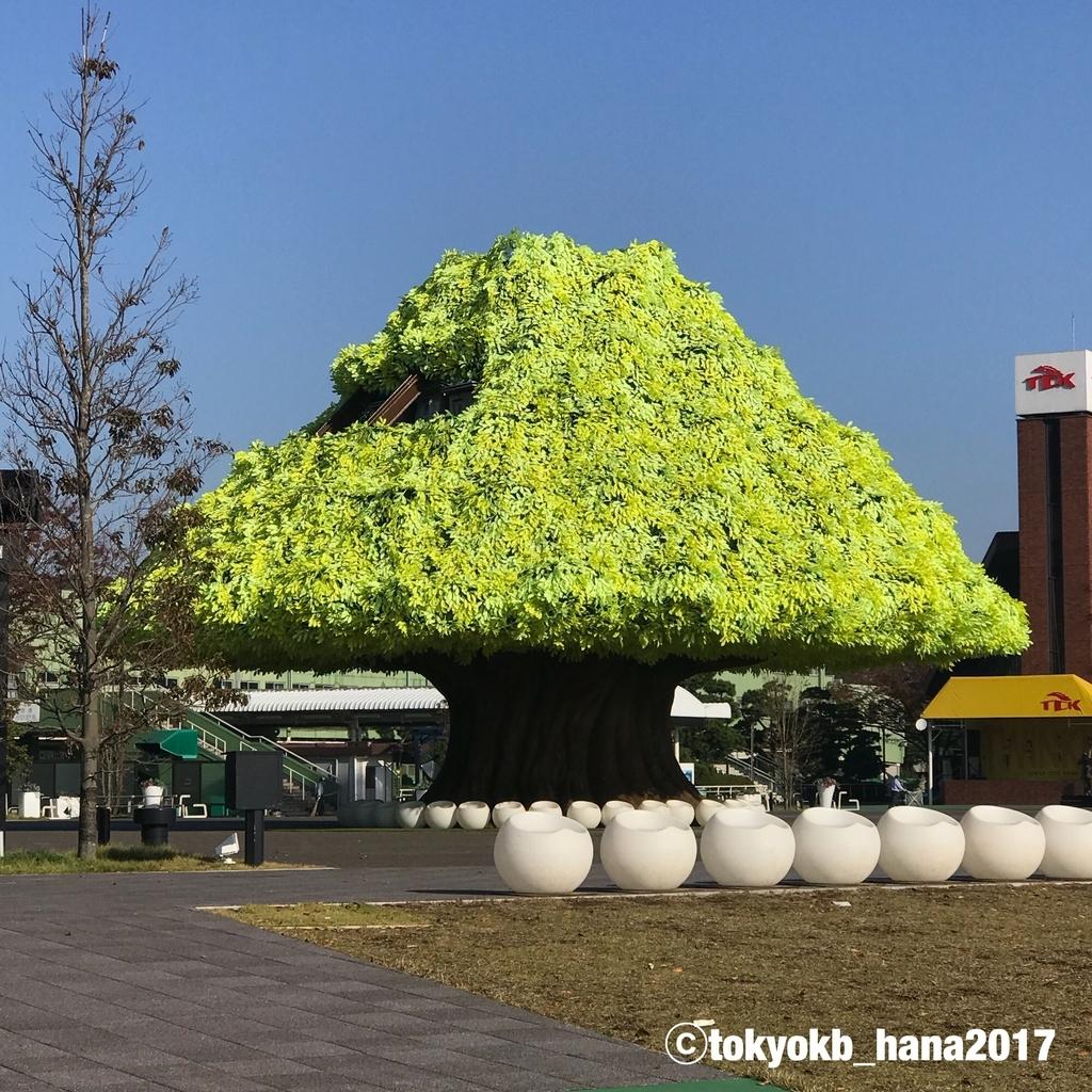 f:id:tokyokb_hana2017:20181110100216j:plain
