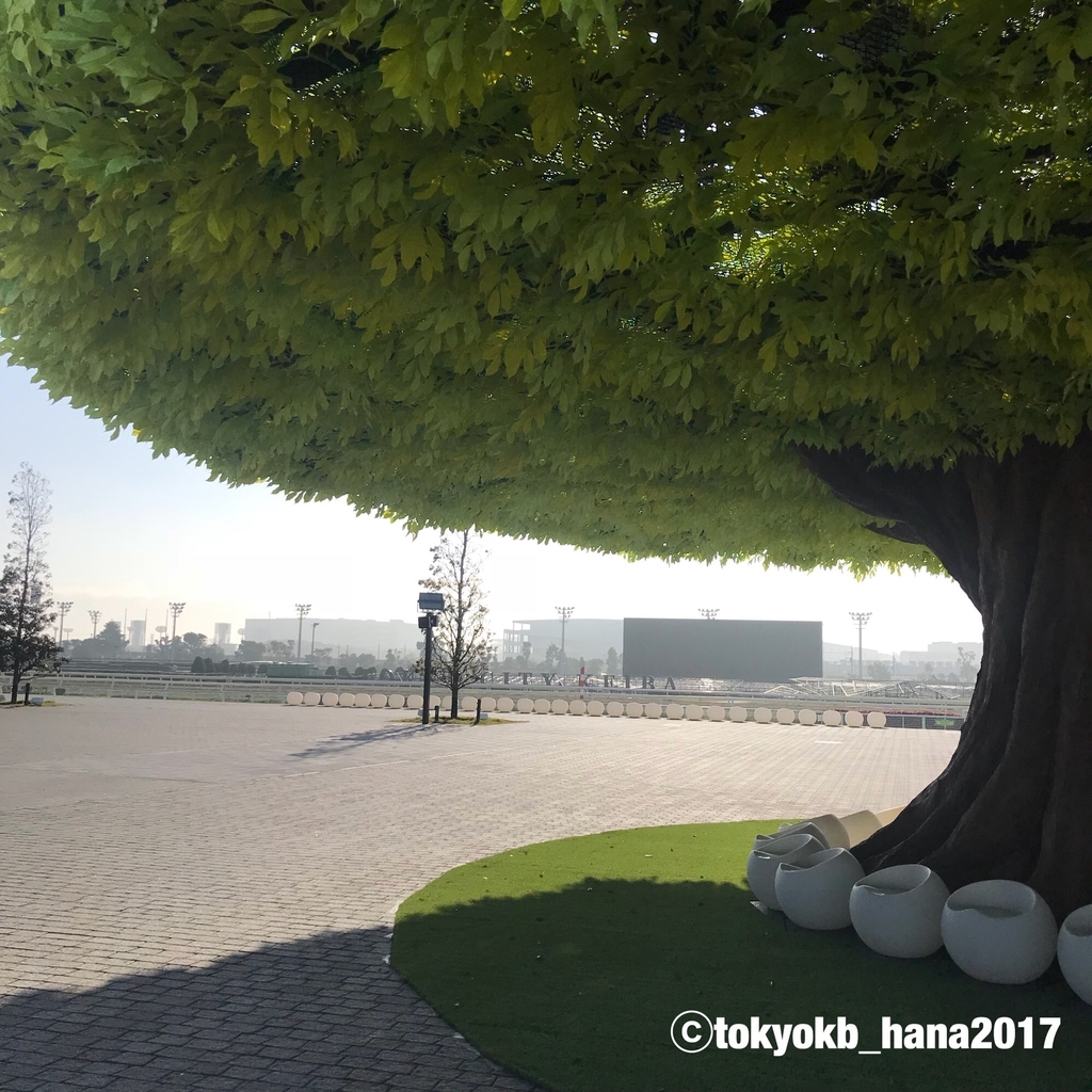 f:id:tokyokb_hana2017:20181110100234j:plain
