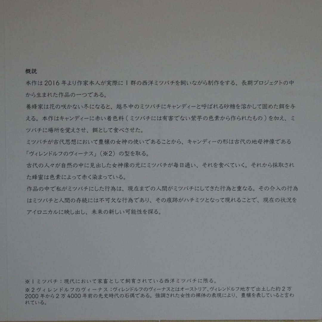 f:id:tokyokenji-teacher:20190410180958j:plain
