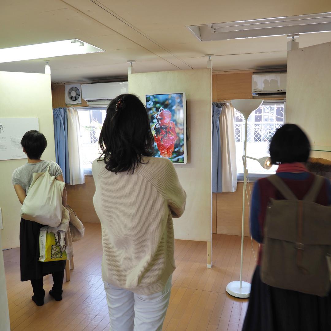 f:id:tokyokenji-teacher:20190413180545j:plain