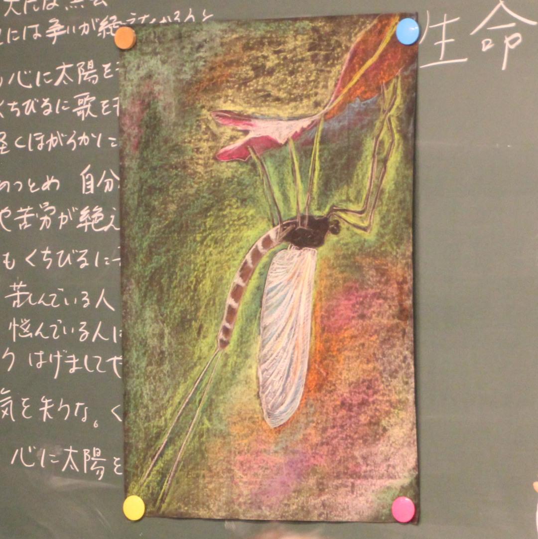 f:id:tokyokenji-teacher:20190621220035j:plain