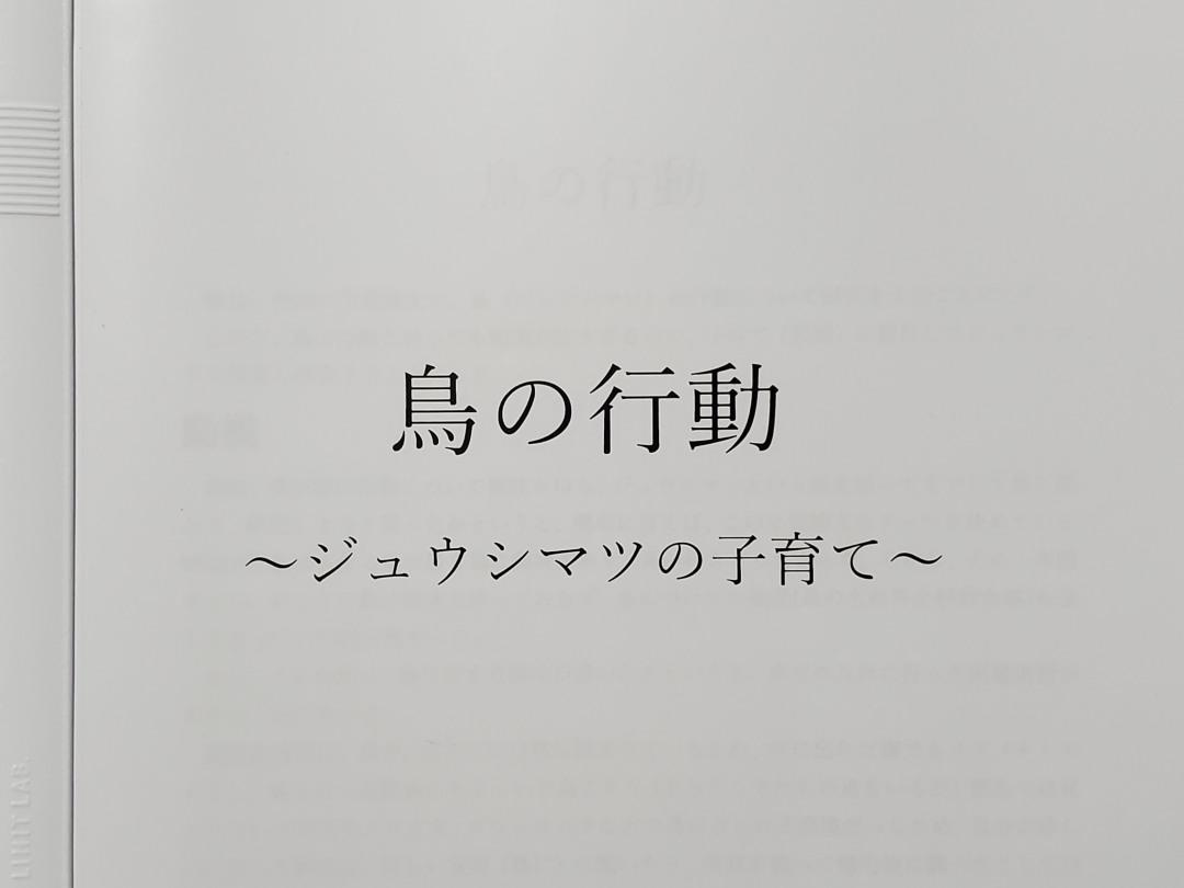 f:id:tokyokenji-teacher:20200720175054j:plain