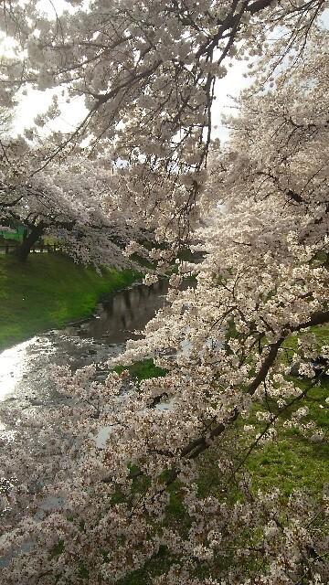 f:id:tokyokenji:20170412195315j:image