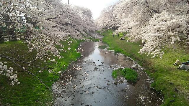 f:id:tokyokenji:20170412195452j:image