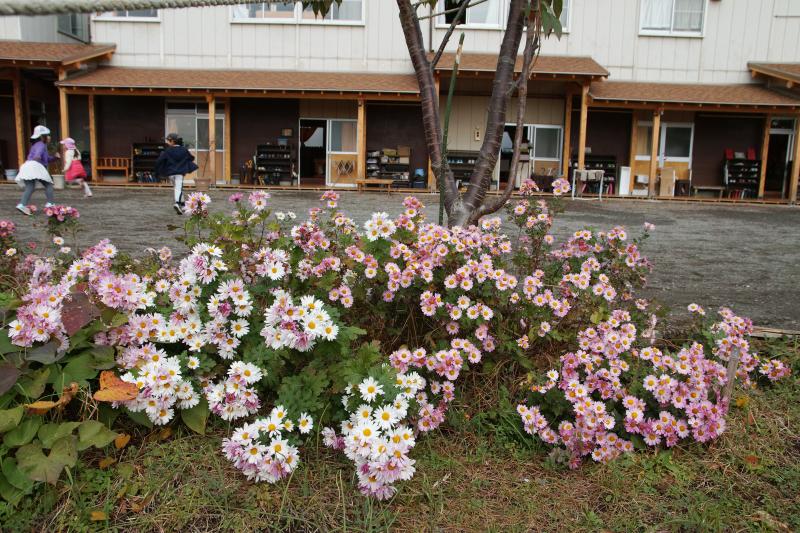 f:id:tokyokenji:20171115083212j:plain