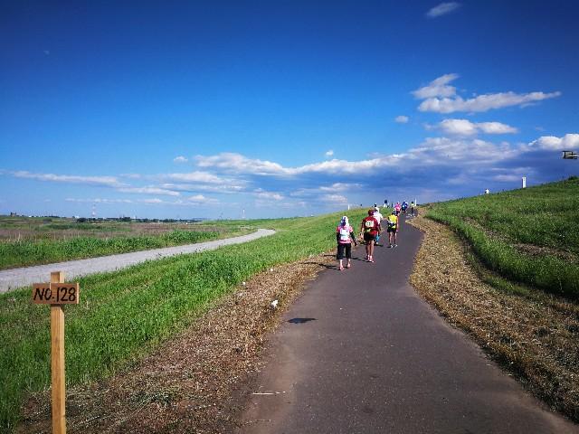 f:id:tokyomarathon:20170604205915j:image