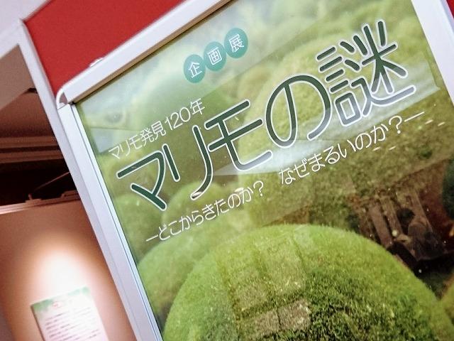 f:id:tokyonakayoshi:20170926224606j:plain