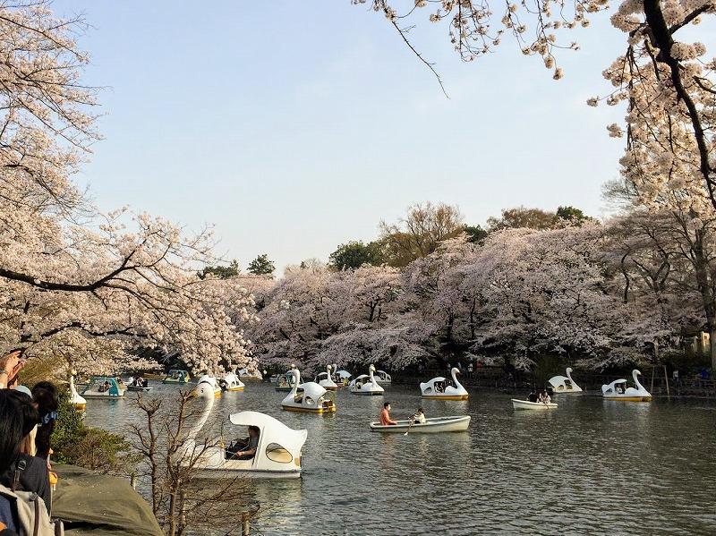 f:id:tokyonakayoshi:20180401211634j:plain