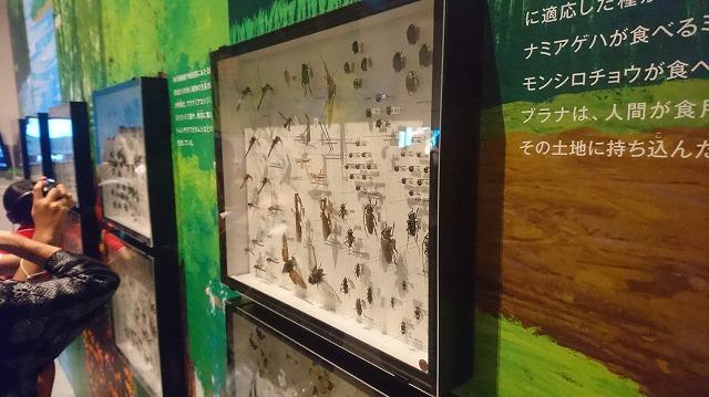 f:id:tokyonakayoshi:20180728001618j:plain