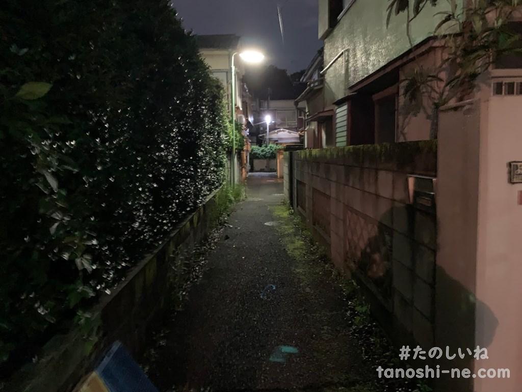 f:id:tokyonakayoshi:20200712163703j:plain