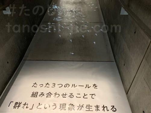 f:id:tokyonakayoshi:20210716041901j:plain