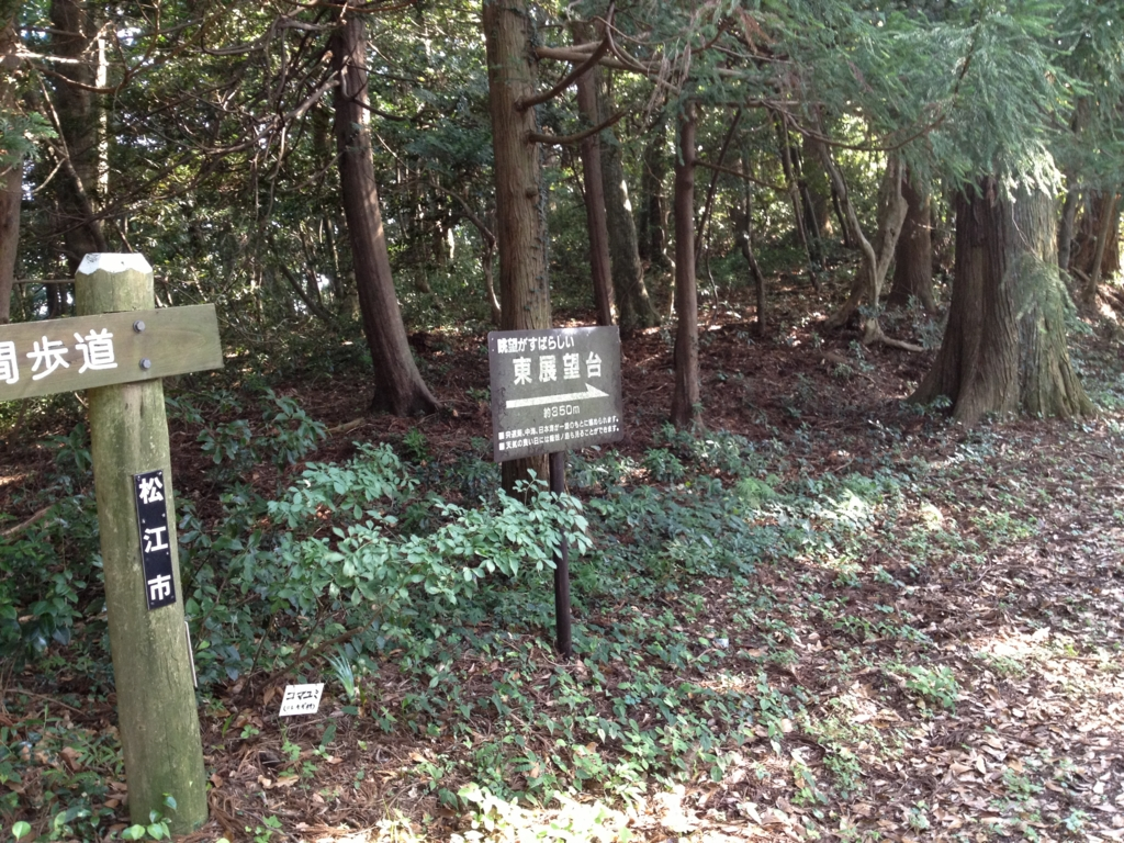 f:id:tokyotsubamezhenjiu:20170117113712j:plain