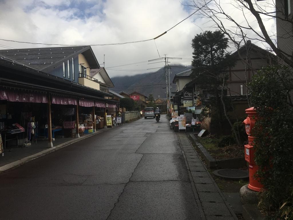 f:id:tokyotsubamezhenjiu:20190226094758j:plain