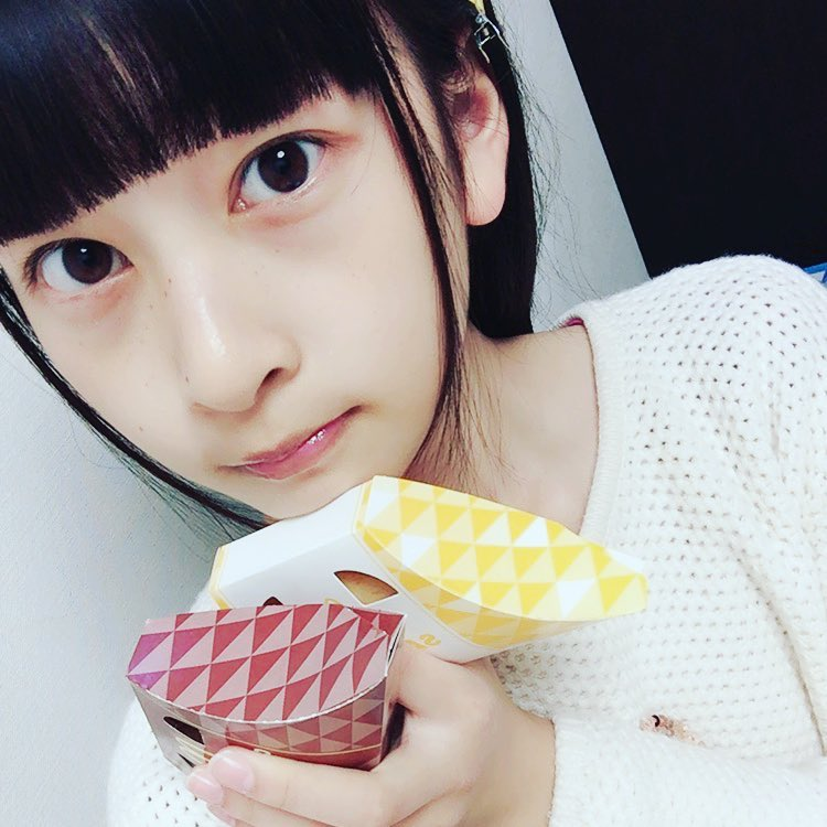 f:id:tokyu_kawagoe:20170130201017j:plain
