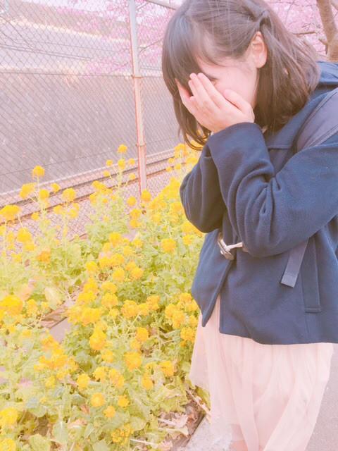 f:id:tokyu_kawagoe:20170222194004j:plain