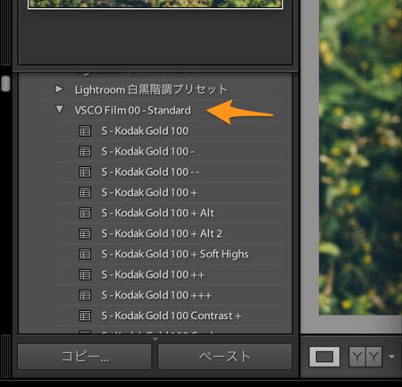 Rawなど_lrcat_-_Adobe_Photoshop_Lightroom_-_現像