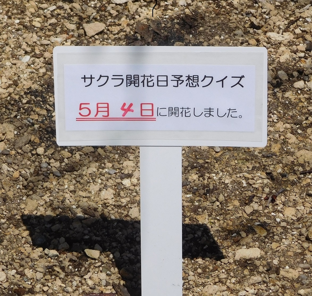f:id:tomakomai-library:20170504120834j:plain