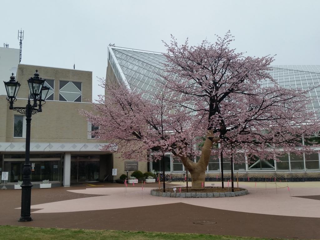 f:id:tomakomai-library:20170511165951j:plain