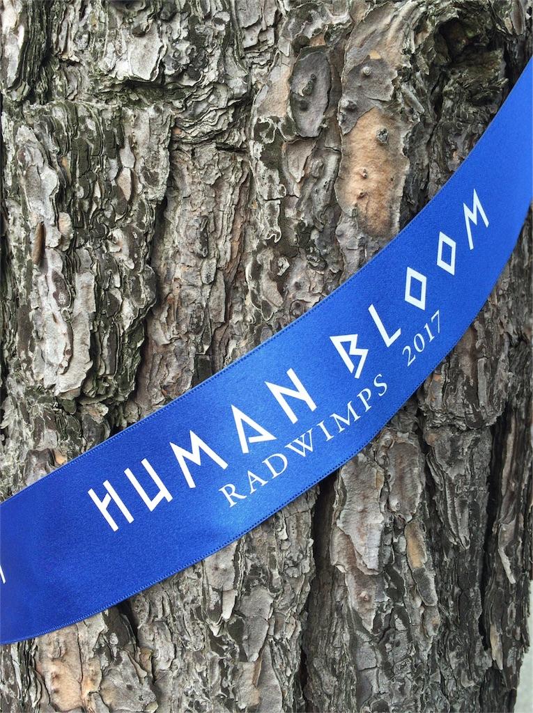 RADWIMPS「Human Bloom Tour 2017 」の木