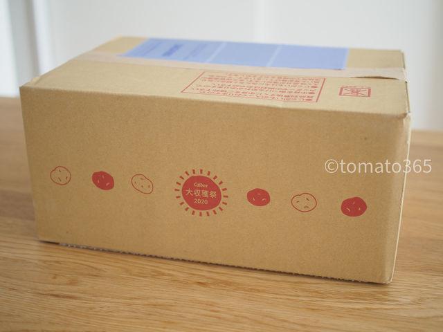 f:id:tomato_365:20201024151517j:plain