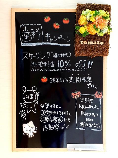f:id:tomatoah:20200221112620j:image