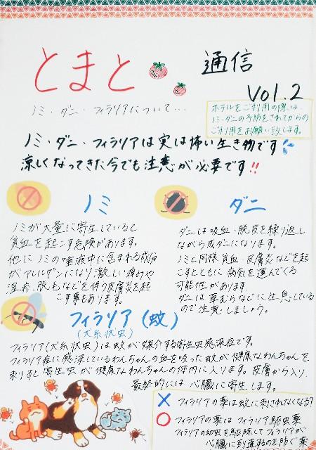 f:id:tomatoah:20200916153851j:image