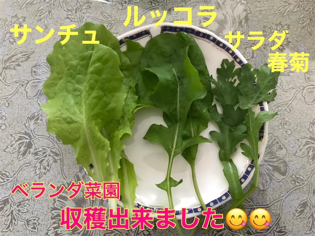 f:id:tomatoma24:20201205175224j:image