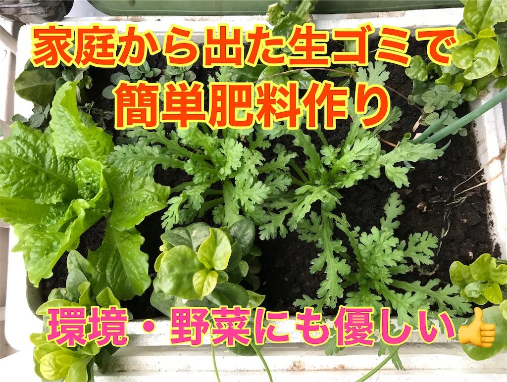 f:id:tomatoma24:20210104230539j:image