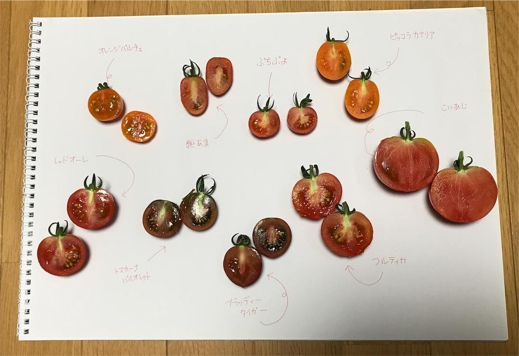 f:id:tomatousagi:20170810061901j:image