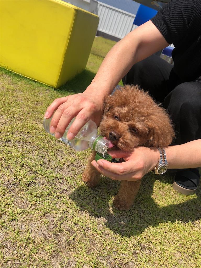 f:id:tomeiyokohama-bmw-mini:20200829180857j:image