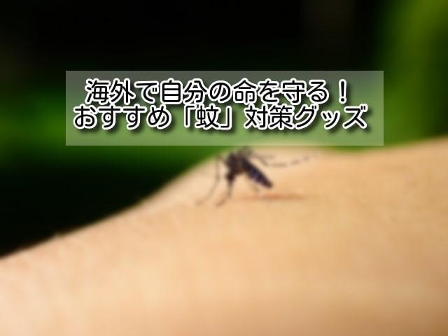 海外旅行の蚊のイメージ