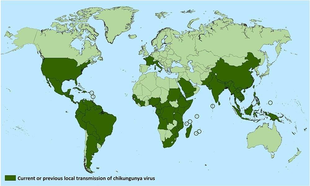 チクングニア熱マップ
