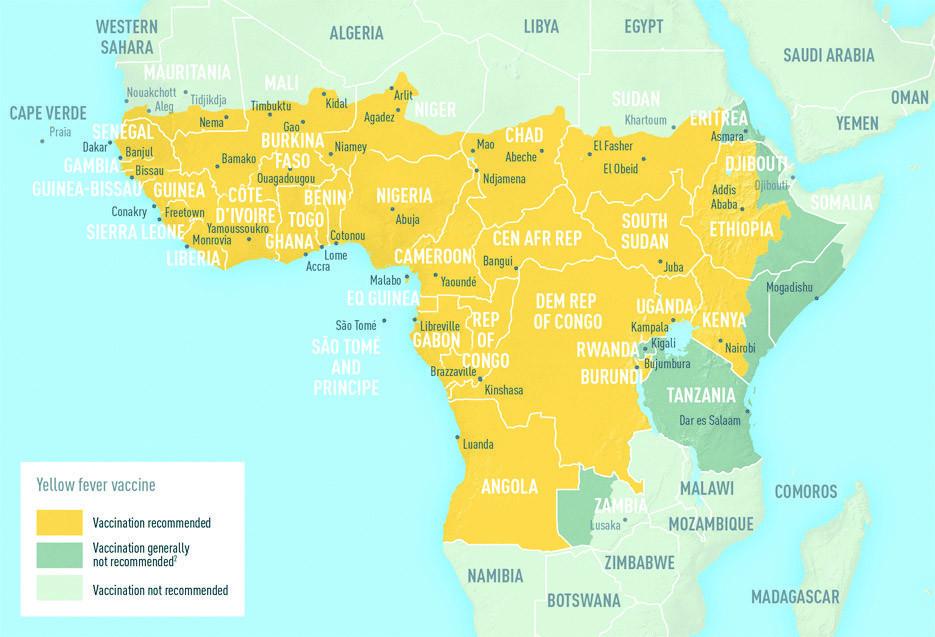 黄熱病マップ