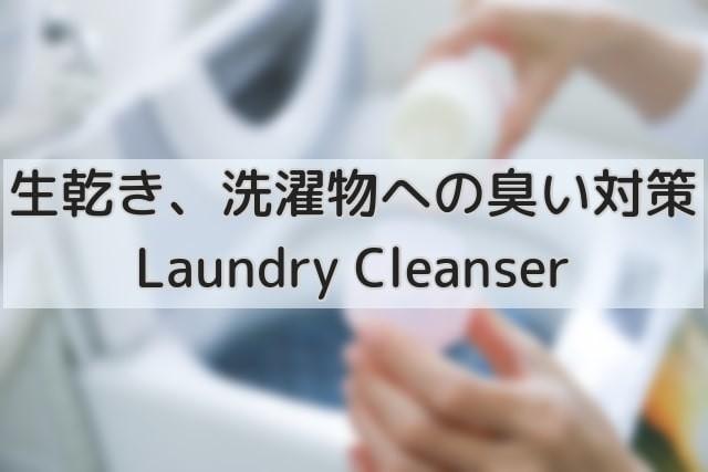 イギリス洗濯のイメージ