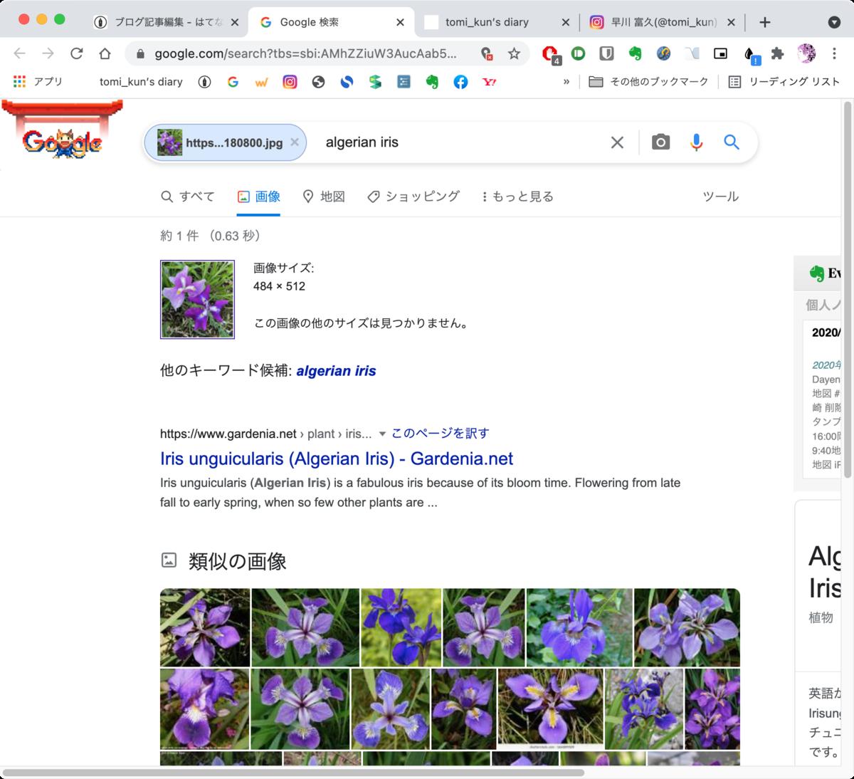 f:id:tomi_kun:20210730191225p:plain