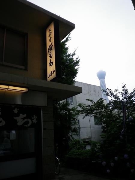 20100713211842