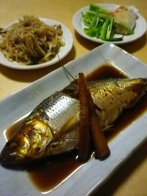 コノシロ煮魚