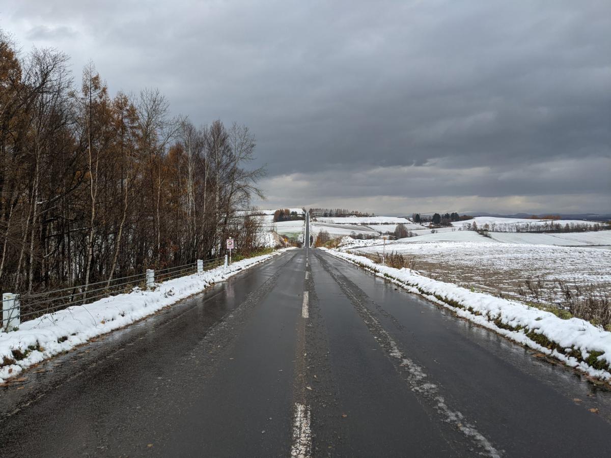 雪がつもり始めているジェットコースターの路の写真
