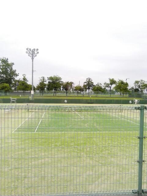 f:id:tomioka-tennis:20160818075241j:plain
