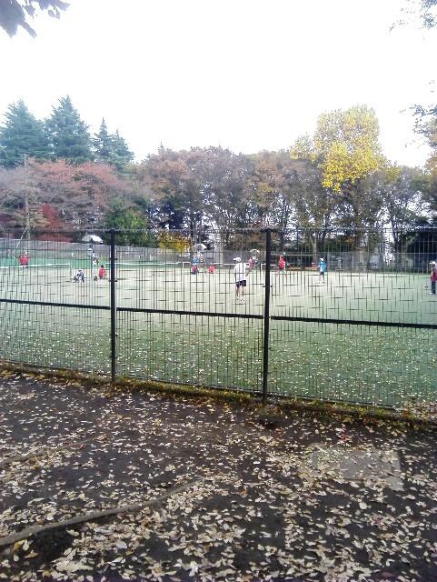 f:id:tomioka-tennis:20161120164401j:plain